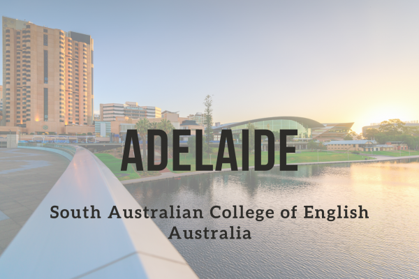 Kurz angličtiny – Adelaide (South Australian College of English)
