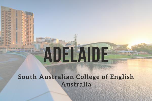 Kurz angličtiny – Adelaide (South Australian College of English)
