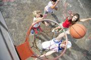 Basket_TH1