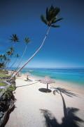 Fiji_beach_tall_small