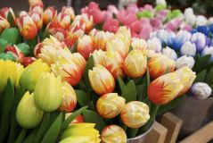 Wooden tulips in Amsterdam flower market.