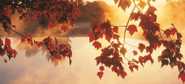 Udělejte si na podzim radost…